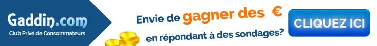 Gaddin com sondages rémunérés gaddin.com