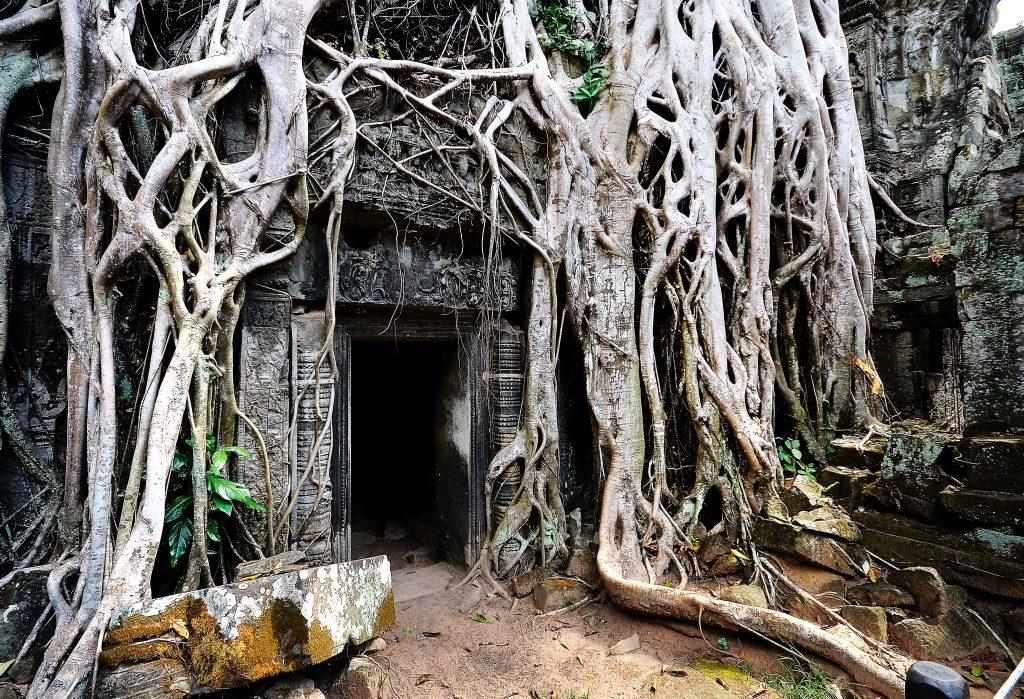 Wat Phu l'un des meilleurs endroits à visiter au Laos