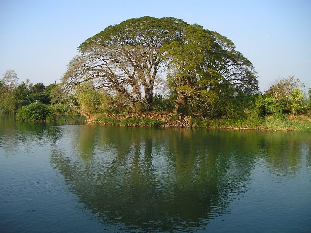 4000 iles laos mékong voyage