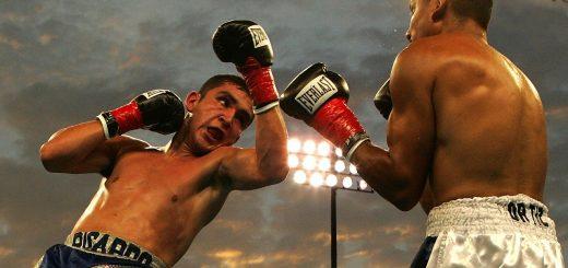 meilleurs boxeurs de l'histoire Top 10
